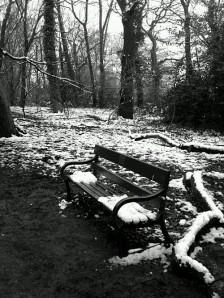 wpid-hggatewoodsnowthreebw.jpg
